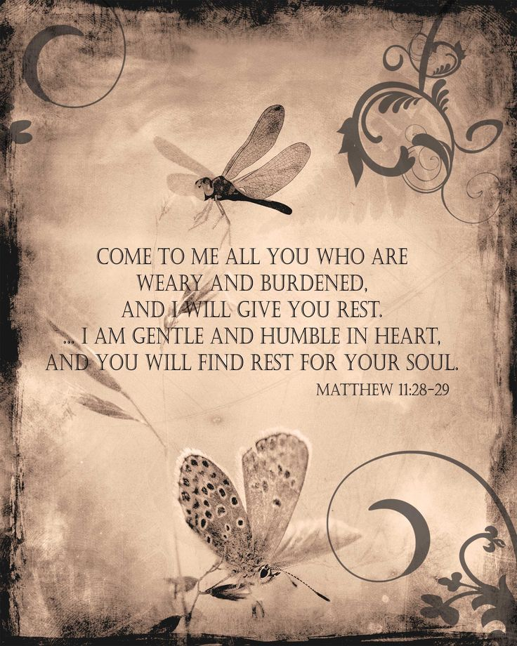 Rest: Learn what it means to take upon Jesus' yoke  how his grace will offer you rest