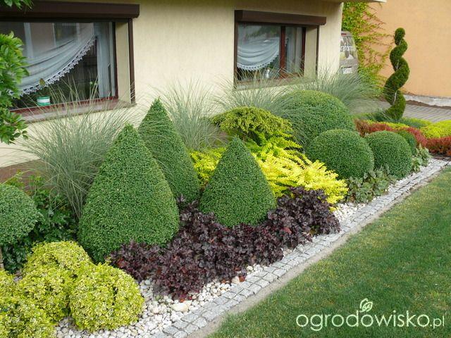 Ogród mały, ale pojemny;) - strona 80 - Forum ogrodnicze - Ogrodowisko
