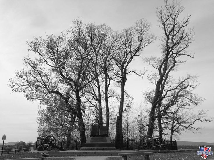 """153 years ago, General Robert E. Lee located this copse of trees from afar and designated them as the focal point of a Confederate assault on the Union center. Known as """"Pickett's Charge,"""" the assault ultimately failed and resulted in over a 50% casualty rate for the Confederates."""