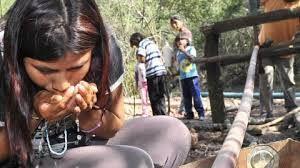 Chaco - Escacez de agua