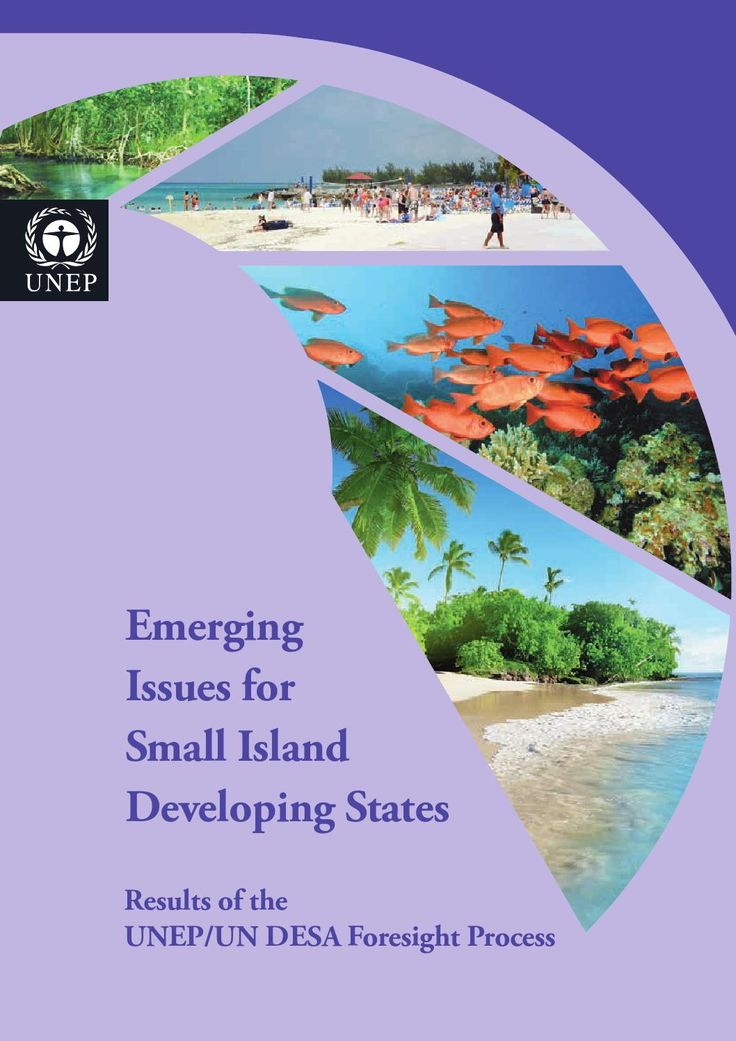 ISSUU - Emerging issues for small island developing states by United Nations Environment Programme