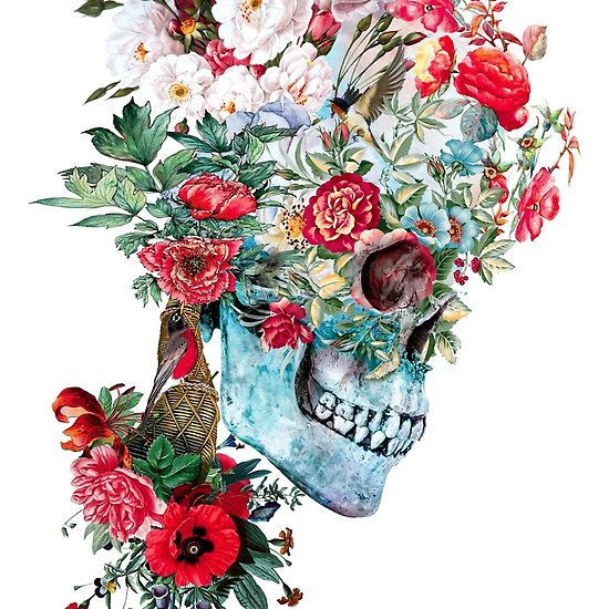 Momento Mori RPE #skull #collage #animals #birds #artist #design #illustration #creative #cool #art