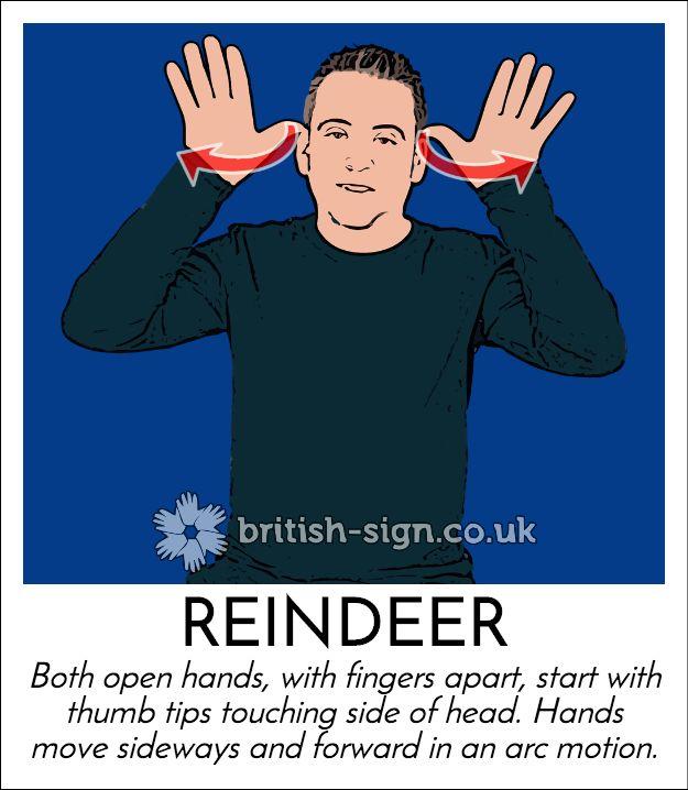Today's #BritishSignLanguage sign is: REINDEER
