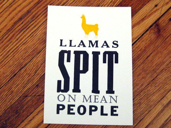 If you're a bitch or an asshole I will have my  #llama spit on you. #funny #true