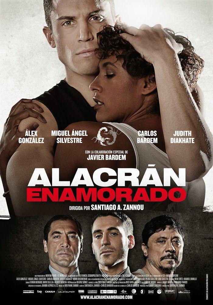 Alacrán enamorado (2013) | Otra vida es posible... Protagonizada por los aun prometedores Álex González y Miguel Ángel Silvestre, y los...