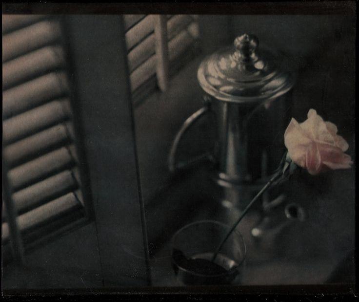 fragile beauty by aglayan-agac.deviantart.com