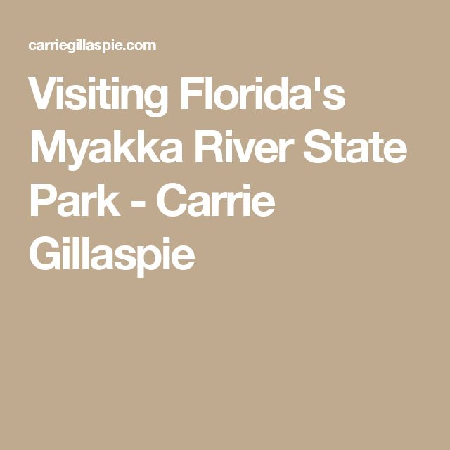Visiting Florida's Myakka River State Park - Carrie Gillaspie
