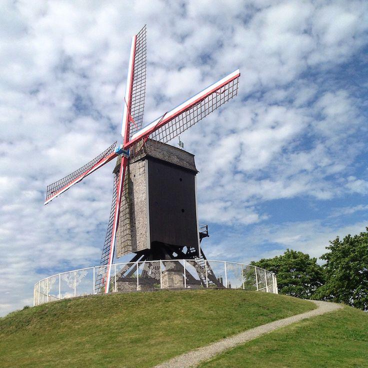 Un fine settimana in Belgio: cinque consigli per scoprire Bruges - mulino a vento