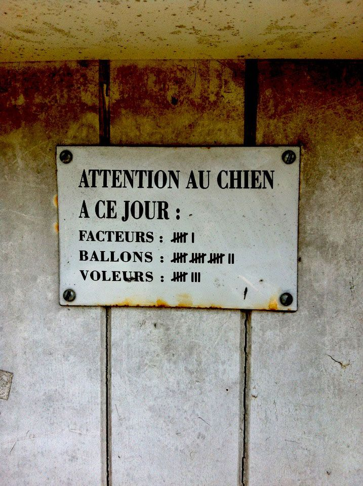 fete-voisin-humour-attention-chien