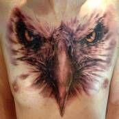 Adler Kopf Brust Tätowierung