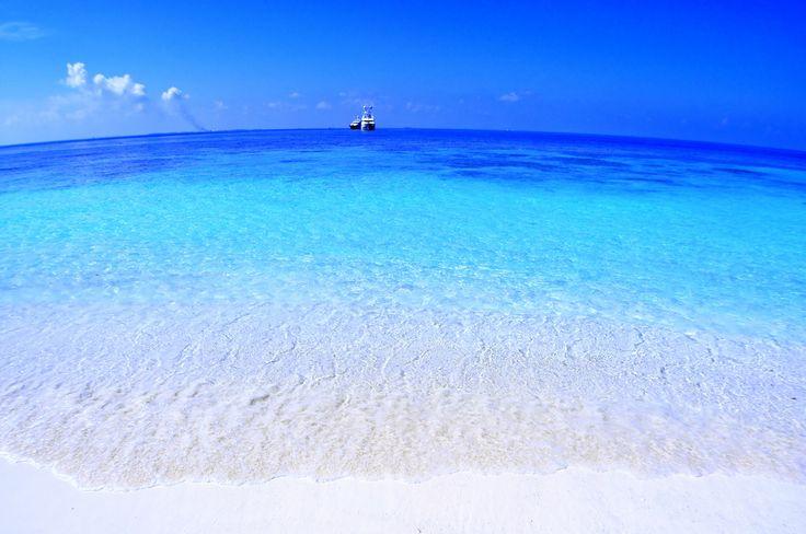 Photo of the Moment: The Brilliant Colours of #Maldives -