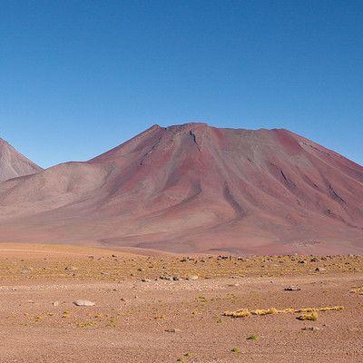 Какая пустыня является самой сухой? (Не считая ледяных пустынь) Атакама.