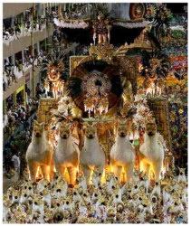 escolas de samba fotos: Bucket List, Armchair Travel Brazil, Carnival River, Rio De Janeiro, Carnivals, Carnival, Wonderful Finds, Carnival Frenzy