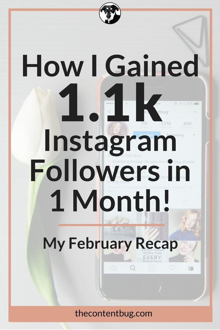 Want to gain Instagram followers fast?! I'm sharing my top tips on how I gained 1,000+ Instagram followers in 1 month! Plus a little February Recap.