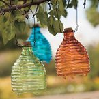 Wasp Trap: recycled glass wasp catcher - Gaiam All-natural, eco-smart wasp traps