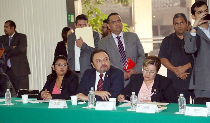 Francisco Torres: Quedó formalmente integrado a tres Comisiones de la Cámara de Diputados del Congreso de la Unión