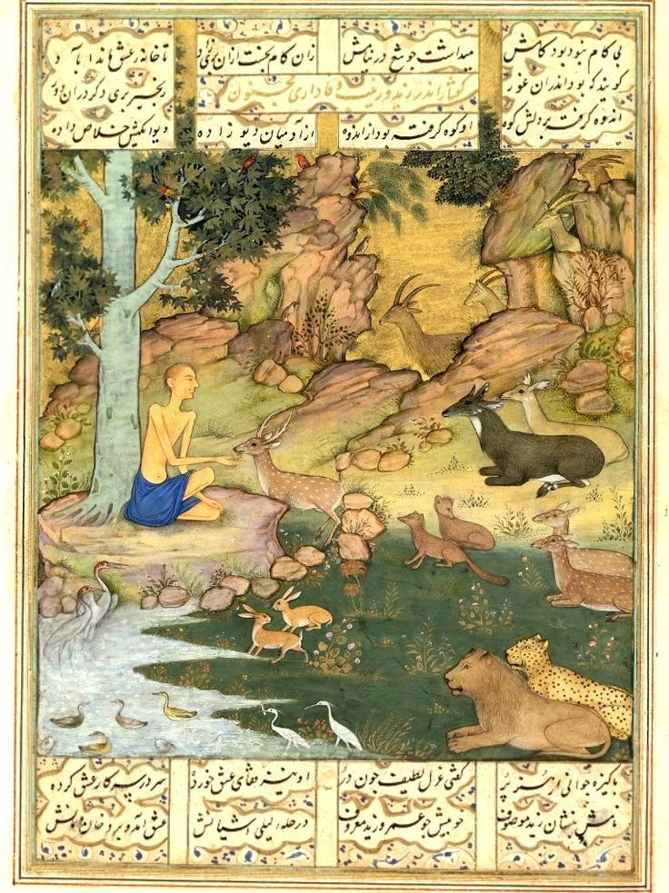 Majnun Among Animals