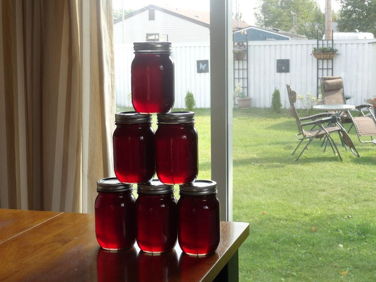 pin cherry jelly Grandma and Grandpa used to make this