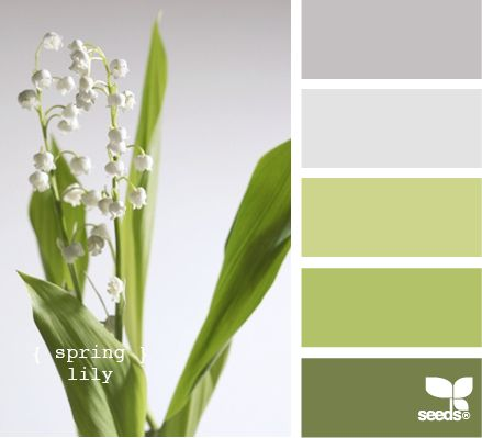 Love this color pallette.  Spring lily  If lily of the valley is not available, get this pallette using artemisia, lamb's ear, seeded euc, green lysianthus, and/or green roses.  Pale blue delphiniums would look great too. #paintingcolours