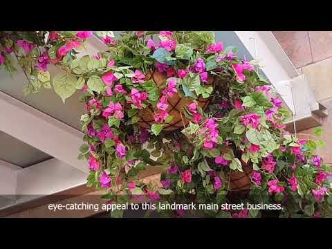 Eye Catching Colour in Surfers Paradise Eatery - YouTube