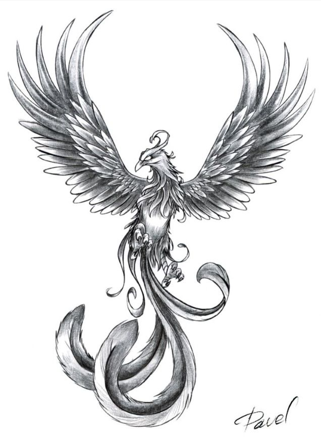 Possible Phoenix tattoo...except I want it orange, red and yellow