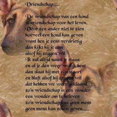 honden gedicht