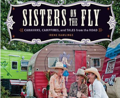 sistersontheflyimage: Books Blogs Journ, Fun Cool Books, My Sister