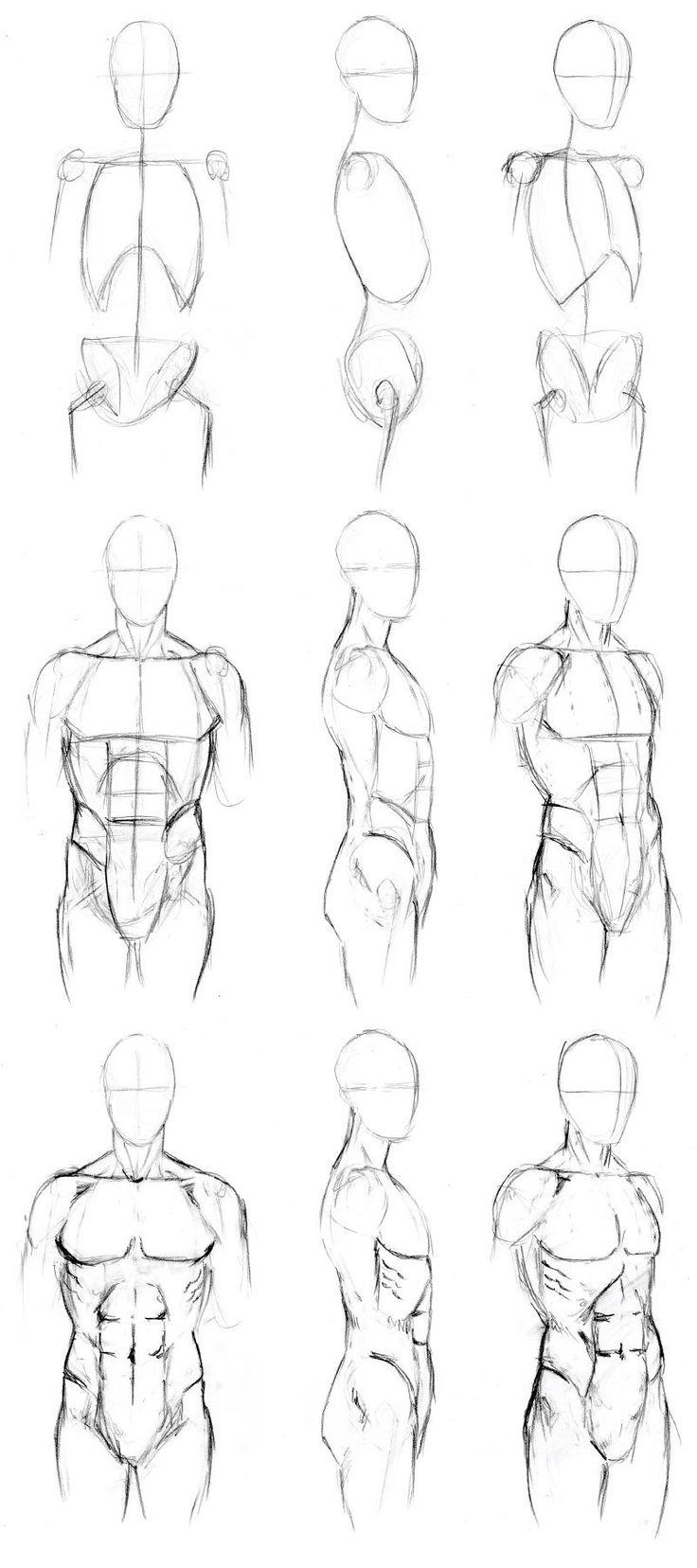 Basic Male Torso Tutorial By Timflanagan On Deviantart Step 1