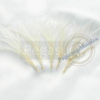Ivory Ostrich Spray Feathers (5 Sprays) - $4.50 : Pegasus Maiden, Craft Supplies for DIY enthusiasts