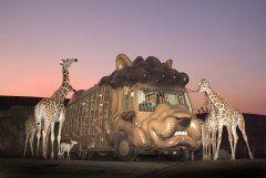 夏休みは大分県宇佐市のアフリカンサファリに行こう(o) アフリカンサファリが8月30日まで19時20分まで開園時間を延長して営業するらしいよ ジャングルバスからの暗い中でのエサやり体験や夜行性の動物を見ることができるんだって まるでライオンキングみたいな世界に出会うことができるかもしれないね(ω)  #アフリカンサファリ #動物園 #ライオンキング #夏休み tags[大分県]