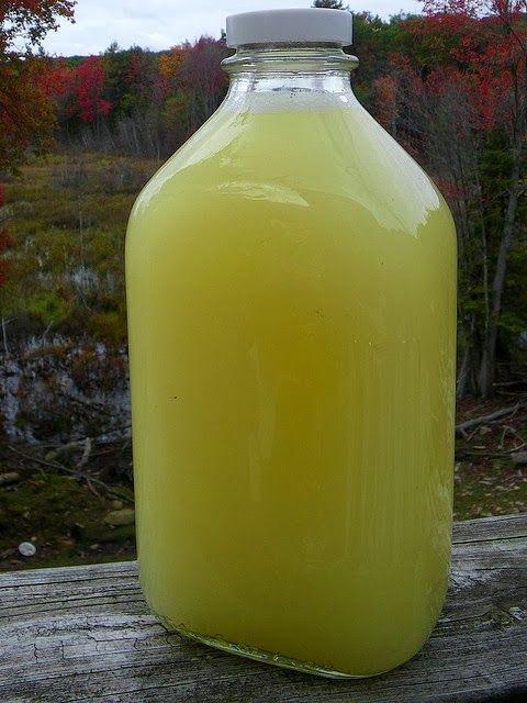 Medieval Cheese Forum: Whey Lemonade!