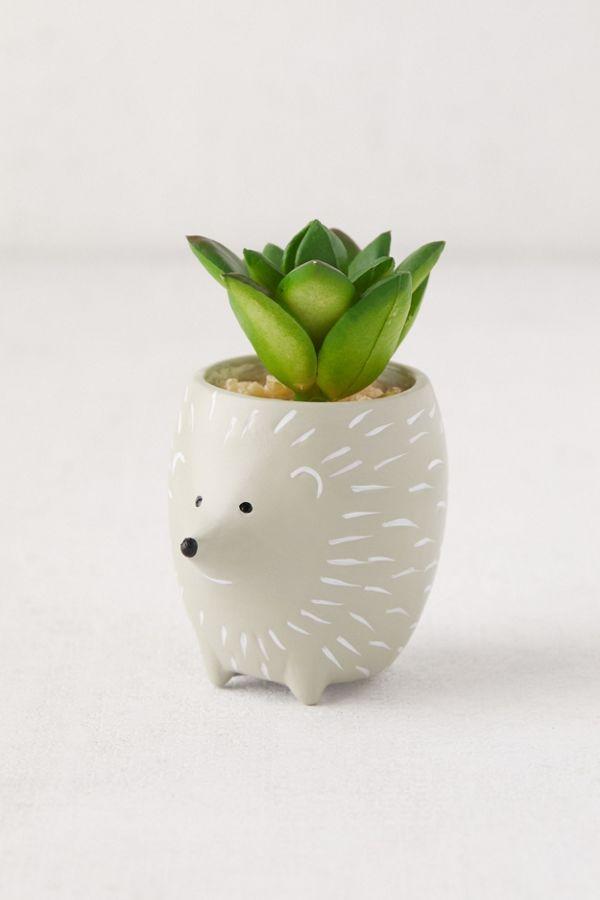 Tiny Animal Pot Faux Succulent 12 Pottery Plant Pot Clay Plant Pots Garden Pottery