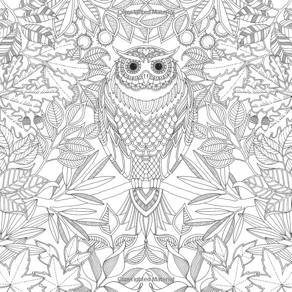 Secret Garden By Johanna Basford Published Laurence King Coloring Book Sample Page