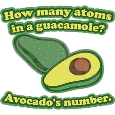 In celebration of International Mole Day (23rd October), Reddit users asked the internet to calculate the imaginary molecular mass of the humble avocado. While largely just for fun, it gives us a c…