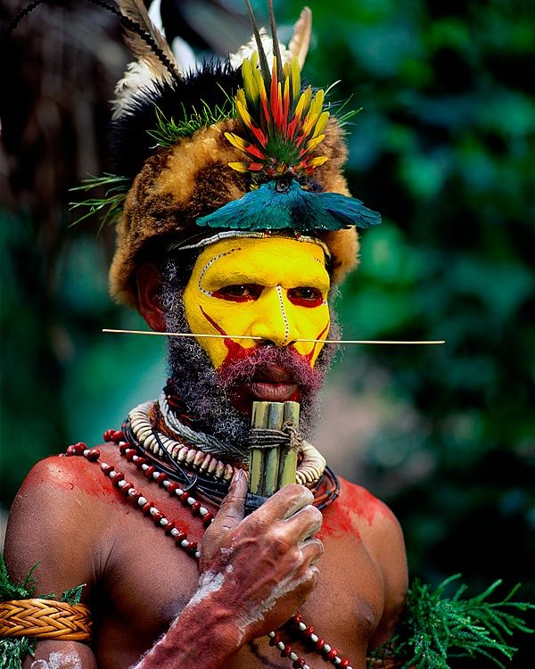 Huli tribe, The Highlands, Papua New Guinea. Huli tribesmen are famous for the wigs they make from human hair, and this warrior has decorated his with a Bird of Paradise displaying its beautiful turquoise wings.