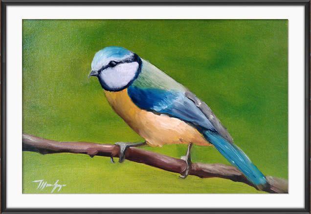 Painting Chapim-azul (Cyanistes caeruleus)