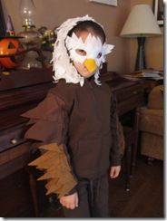 eagle costume-Magnus wants to be Spirit the eagle and I shall make it happen