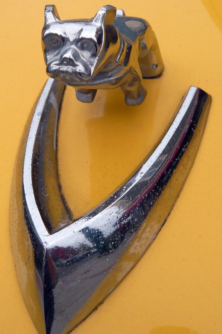 Falcon hood ornament - Dog Car Hood Ornament Design Pets Cars