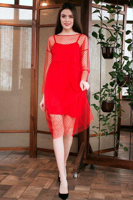 92b89ed2483 Красное платье-сетка GLORY из фатина в горох с подкладкой Garne ...