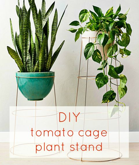 Useful in gardens, tomato cages are also ripe for repurposing as pretty plant stands. Cut off the spiky feet with a clipper, then spray-paint the cage gold. Set it on its wide end, and fit a pot inside.