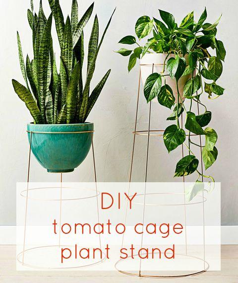 DIY / Créer un support pour plantes