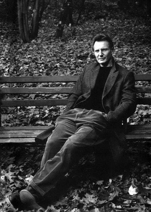 Liam Neeson: Excalibur 1981 and Clash of the Titans  Les Misérables (1998) Schindler's List,Lincoln 2002,Kingdom of Heaven 2005.The Chronicles of Narnia: The Lion, the Witch and the Wardrobe 2007, Taken 2008
