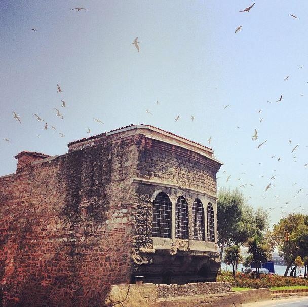 #istanbul #Gull #photography #oldbuilding #restoration #sky #balat #halic #goldenhorn