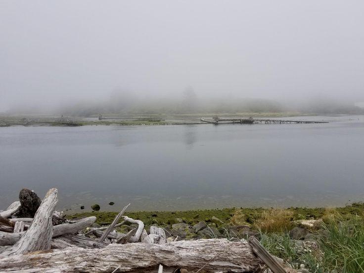 Quillayute River Washington (near Rialto Beach) on a particularly foggy day [2880x2160][OC]