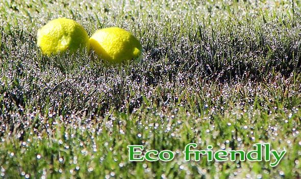 Eco friendly cleaning ideas for the cottage rentals