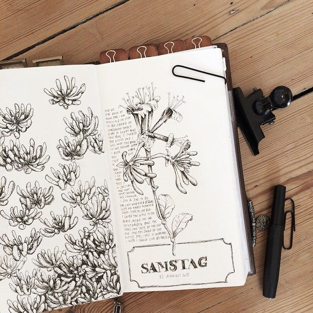 Midori Traveler's notebook by nicnillas ink #travelersnotebook #journal #artjournal #journaling #illustration #drawing