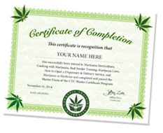 Cannabis Training University is the leading online marijuana school, developed to teach you how to grow weed.
