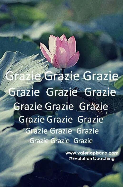 Grazie è un sentimento gratitudine...questa sconosciuta ,)