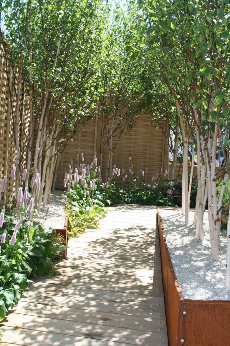 The 89 best S3i Show Gardens images on Pinterest | Container plants ...