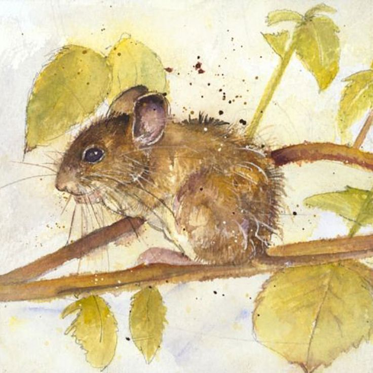 Kate Wyatt Mouse Limited Edition Print